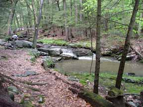 Roaring Brook Nature Center Ct